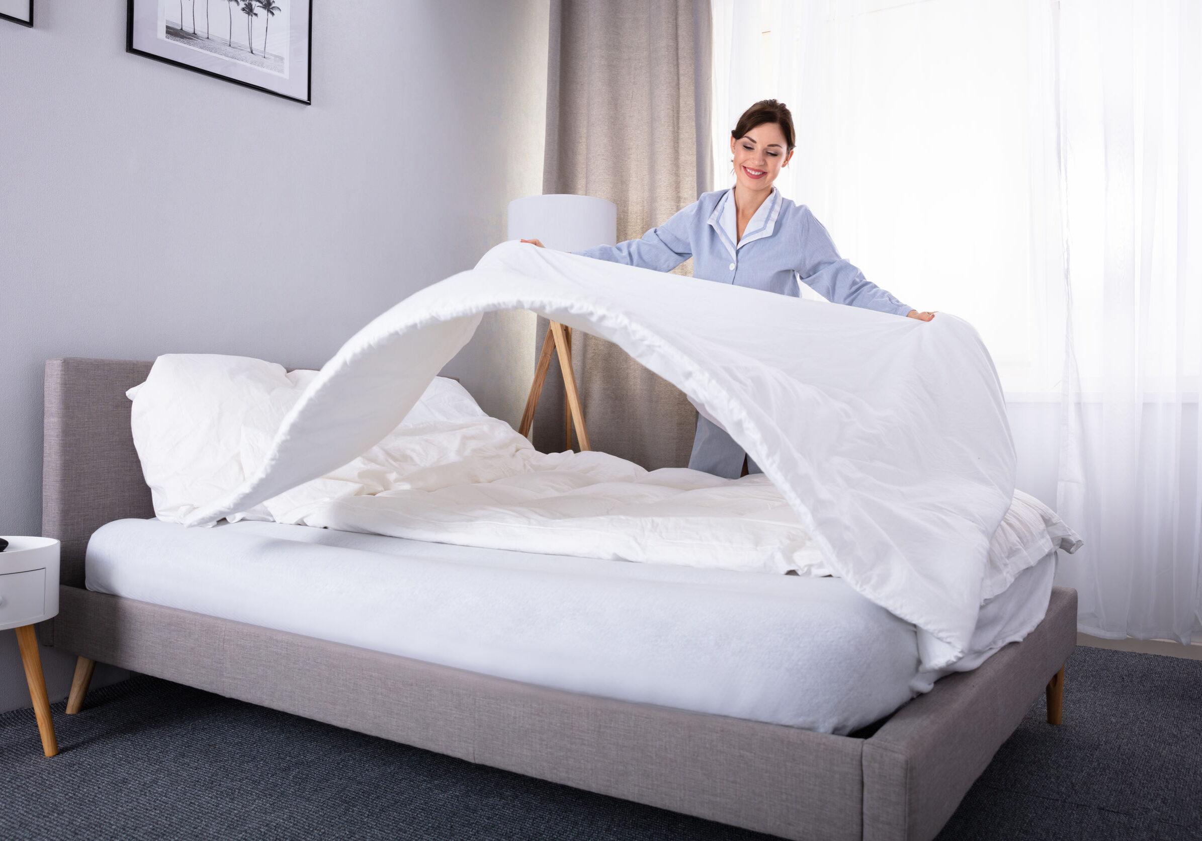 Pest Control in Hotels